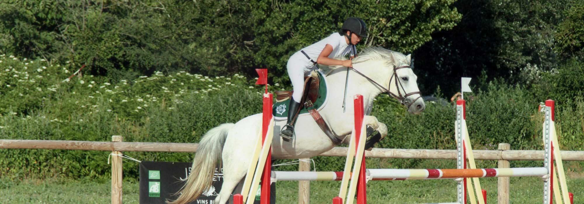 poney3